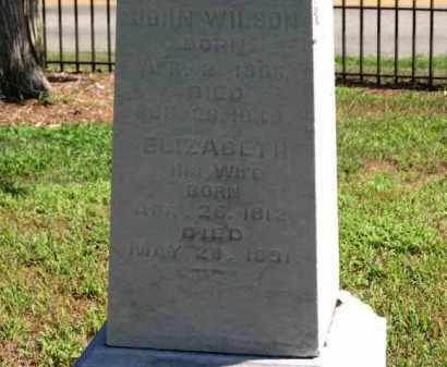 WILSON, JOHN - Erie County, Ohio | JOHN WILSON - Ohio Gravestone Photos