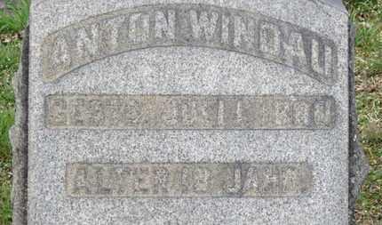 WINDAU, ANTON - Erie County, Ohio | ANTON WINDAU - Ohio Gravestone Photos