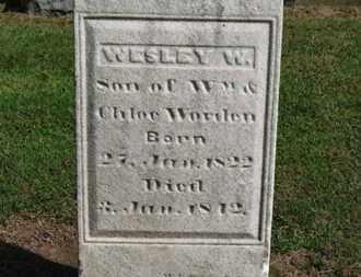 WORDEN, CHLOE - Erie County, Ohio | CHLOE WORDEN - Ohio Gravestone Photos
