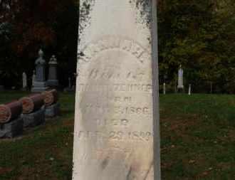 ZEHNER, HANNAH - Erie County, Ohio   HANNAH ZEHNER - Ohio Gravestone Photos