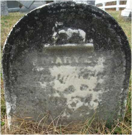 ?, MARY C. - Fairfield County, Ohio | MARY C. ? - Ohio Gravestone Photos