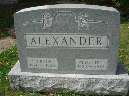 ALEXANDER, ALYCE DOT - Fairfield County, Ohio | ALYCE DOT ALEXANDER - Ohio Gravestone Photos