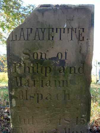 ALSPACH, LAFAYETTE - Fairfield County, Ohio | LAFAYETTE ALSPACH - Ohio Gravestone Photos