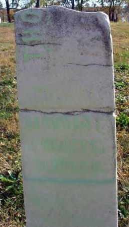 ALSPACH, THOMAS WHITZELL - Fairfield County, Ohio | THOMAS WHITZELL ALSPACH - Ohio Gravestone Photos