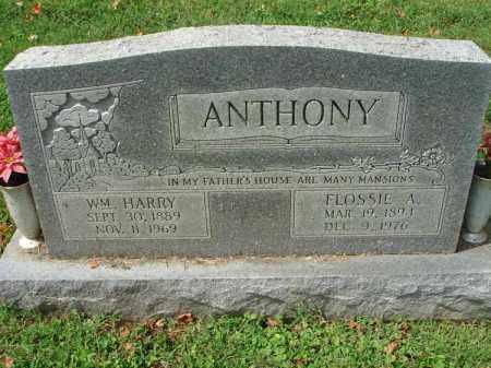 ANTHONY, WILLIAM HARRY - Fairfield County, Ohio | WILLIAM HARRY ANTHONY - Ohio Gravestone Photos
