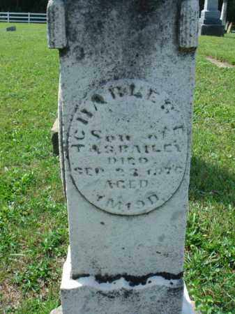 E. BAILEY, CHARLES - Fairfield County, Ohio | CHARLES E. BAILEY - Ohio Gravestone Photos