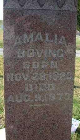 BOVING, AMALIA - Fairfield County, Ohio | AMALIA BOVING - Ohio Gravestone Photos