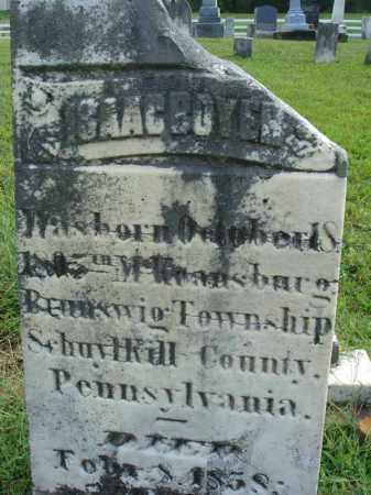 BOYER, ISAAC - Fairfield County, Ohio | ISAAC BOYER - Ohio Gravestone Photos