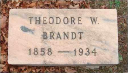 BRANDT, THEODORE W. - Fairfield County, Ohio   THEODORE W. BRANDT - Ohio Gravestone Photos