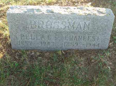 BROSSMAN, CHARLES E. - Fairfield County, Ohio | CHARLES E. BROSSMAN - Ohio Gravestone Photos