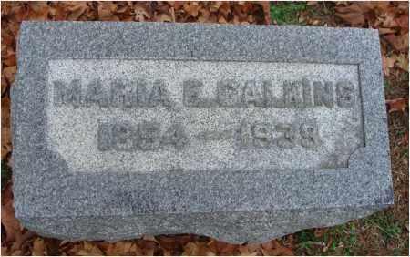 CALKINS, MARIA E. - Fairfield County, Ohio | MARIA E. CALKINS - Ohio Gravestone Photos