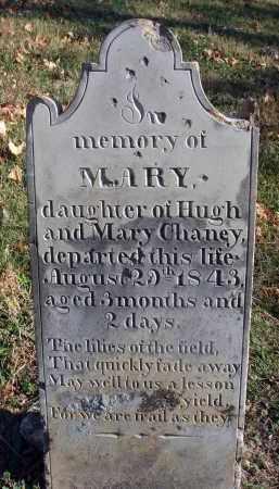 CHANEY, MARY - Fairfield County, Ohio | MARY CHANEY - Ohio Gravestone Photos