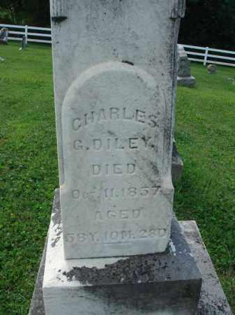 DILEY, CHARLES G. - Fairfield County, Ohio   CHARLES G. DILEY - Ohio Gravestone Photos