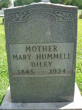DILEY, MARY - Fairfield County, Ohio | MARY DILEY - Ohio Gravestone Photos