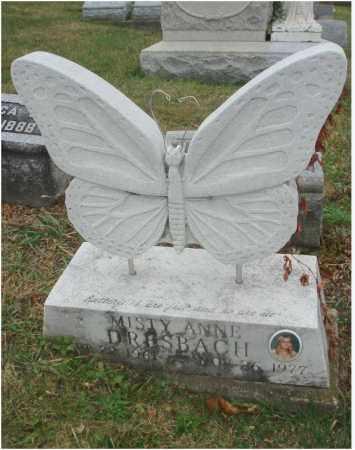 DRESBACH, MISTY ANNE - Fairfield County, Ohio   MISTY ANNE DRESBACH - Ohio Gravestone Photos