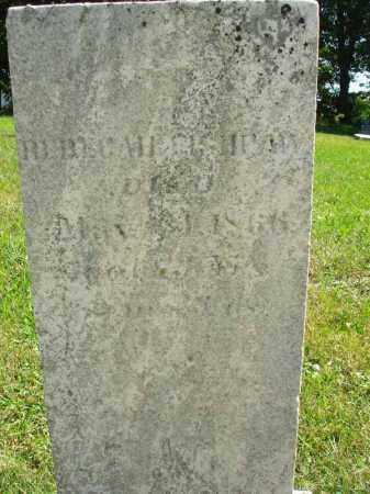 FISHPAW, REBECCA - Fairfield County, Ohio | REBECCA FISHPAW - Ohio Gravestone Photos