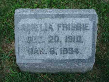 FRISBIE, AMELIA - Fairfield County, Ohio | AMELIA FRISBIE - Ohio Gravestone Photos