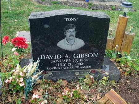 """GIBSON, DAVID A. """"TONY"""" - Fairfield County, Ohio   DAVID A. """"TONY"""" GIBSON - Ohio Gravestone Photos"""