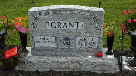 GRANT, ALICE JANE - Fairfield County, Ohio | ALICE JANE GRANT - Ohio Gravestone Photos