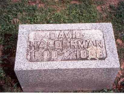 HALDERMAN, DAVID - Fairfield County, Ohio | DAVID HALDERMAN - Ohio Gravestone Photos