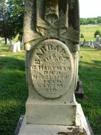 HARTMAN, BARBARA - Fairfield County, Ohio | BARBARA HARTMAN - Ohio Gravestone Photos