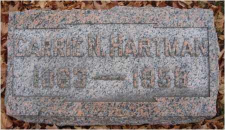 HARTMAN, CARRIE N. - Fairfield County, Ohio | CARRIE N. HARTMAN - Ohio Gravestone Photos