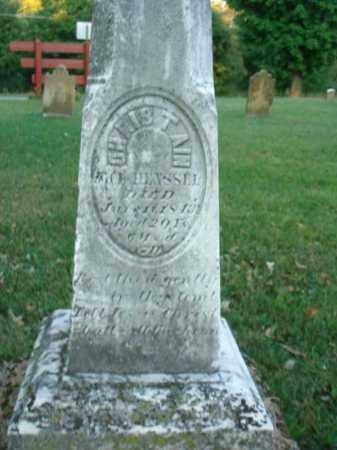 HENSSEL, CHRISTAIN - Fairfield County, Ohio | CHRISTAIN HENSSEL - Ohio Gravestone Photos