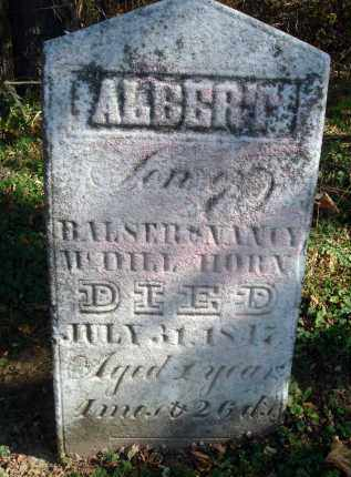 HORN, ALBERT - Fairfield County, Ohio | ALBERT HORN - Ohio Gravestone Photos