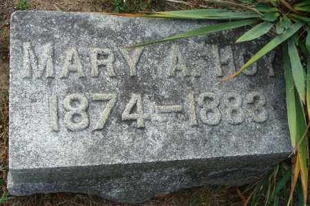 HOY, MARY A. - Fairfield County, Ohio | MARY A. HOY - Ohio Gravestone Photos