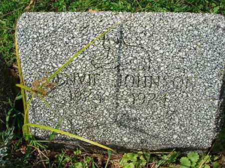 JOHNSON, DENVIE? - Fairfield County, Ohio   DENVIE? JOHNSON - Ohio Gravestone Photos