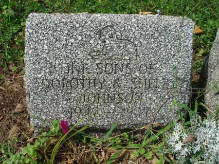 JOHNSON, INF. SONS - Fairfield County, Ohio   INF. SONS JOHNSON - Ohio Gravestone Photos