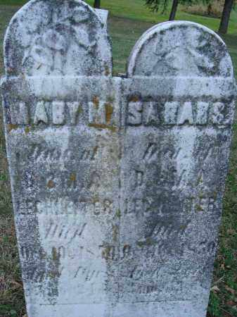 LECHSETTER?, MABY M. - Fairfield County, Ohio | MABY M. LECHSETTER? - Ohio Gravestone Photos