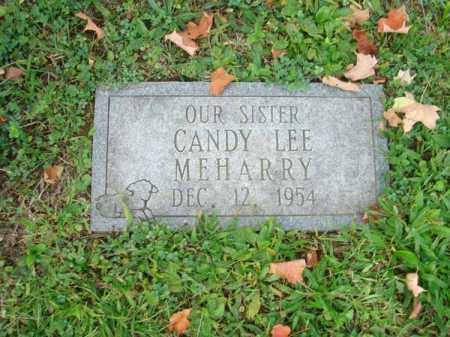 MEHARRY, CANDY LEE - Fairfield County, Ohio | CANDY LEE MEHARRY - Ohio Gravestone Photos