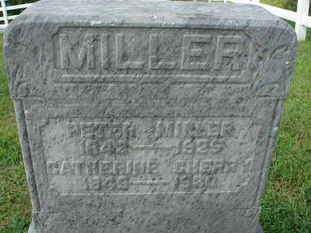 MILLER, CATHERINE - Fairfield County, Ohio | CATHERINE MILLER - Ohio Gravestone Photos