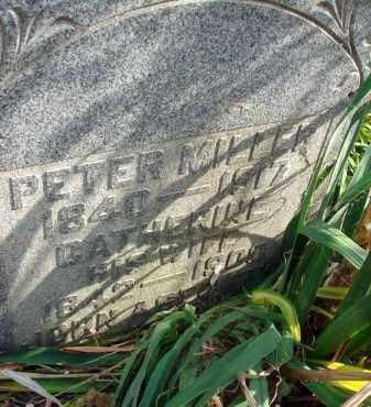 MILLER, PETER - Fairfield County, Ohio   PETER MILLER - Ohio Gravestone Photos