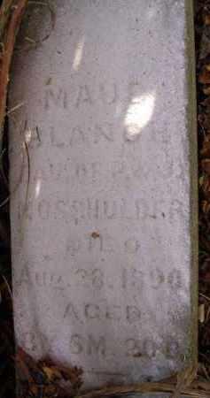 MOSSHOLDER, MAUD BLANCH - Fairfield County, Ohio | MAUD BLANCH MOSSHOLDER - Ohio Gravestone Photos