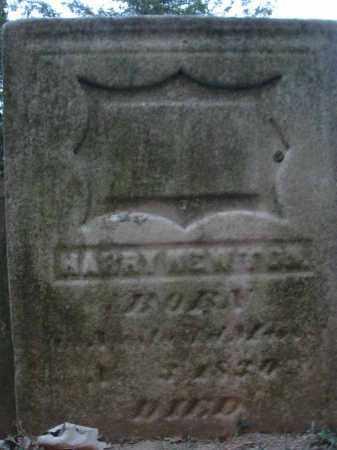 NEWTON, HARRY - Fairfield County, Ohio | HARRY NEWTON - Ohio Gravestone Photos