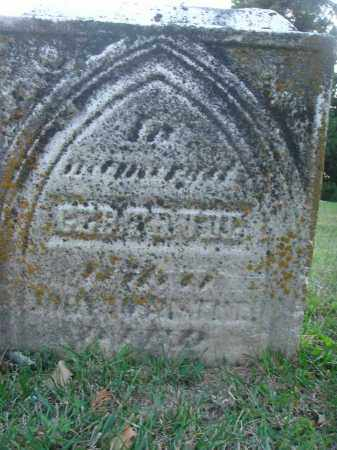 NOTHSTINE, GERTRUDE - Fairfield County, Ohio | GERTRUDE NOTHSTINE - Ohio Gravestone Photos