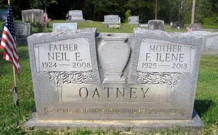 REED OATNEY, F. ILENE - Fairfield County, Ohio | F. ILENE REED OATNEY - Ohio Gravestone Photos