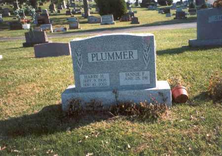 PLUMMER, FANNIE F. - Fairfield County, Ohio | FANNIE F. PLUMMER - Ohio Gravestone Photos