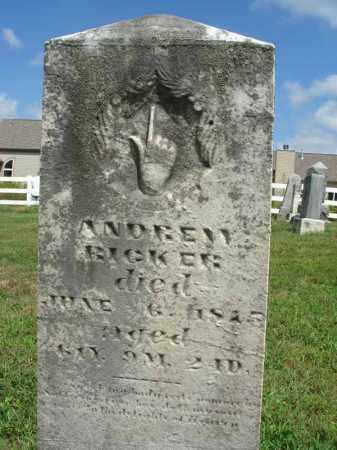 RICKER, ANDREW - Fairfield County, Ohio | ANDREW RICKER - Ohio Gravestone Photos