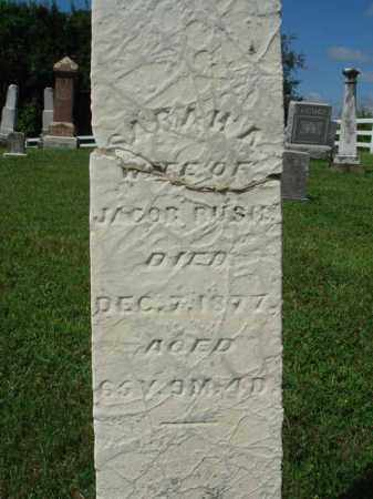 RUSH, SARAH A. - Fairfield County, Ohio   SARAH A. RUSH - Ohio Gravestone Photos