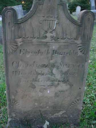 SARYER, ELISABETH - Fairfield County, Ohio | ELISABETH SARYER - Ohio Gravestone Photos