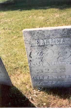 BIERY (BEERY) SCHLEICH, SALMEA - Fairfield County, Ohio | SALMEA BIERY (BEERY) SCHLEICH - Ohio Gravestone Photos