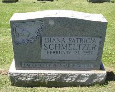 SCHMELTZER, DIANA PATRICIA - Fairfield County, Ohio   DIANA PATRICIA SCHMELTZER - Ohio Gravestone Photos