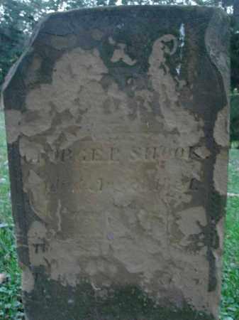 SHOOK, GEORGE E. - Fairfield County, Ohio   GEORGE E. SHOOK - Ohio Gravestone Photos