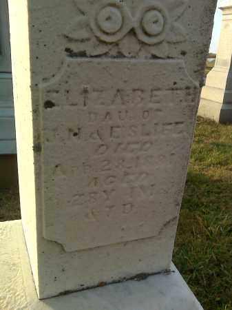 SLIFE, ELIZABETH - Fairfield County, Ohio | ELIZABETH SLIFE - Ohio Gravestone Photos