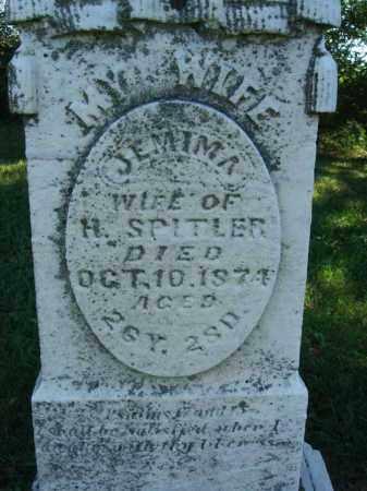 SPITLER, JEMIMA - Fairfield County, Ohio | JEMIMA SPITLER - Ohio Gravestone Photos