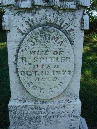 SPITLER, JEMIMA - Fairfield County, Ohio | JEMIMA SPITLER - Ohio Gravestone Photos