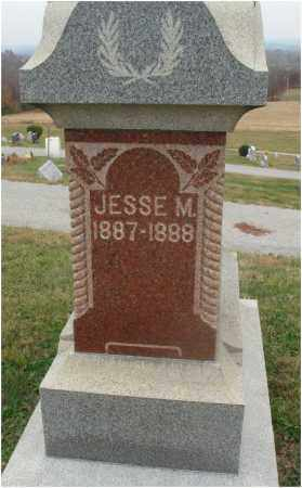 STRUCKMAN, JESSE M. - Fairfield County, Ohio | JESSE M. STRUCKMAN - Ohio Gravestone Photos